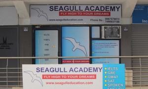 Seagull Acedamy