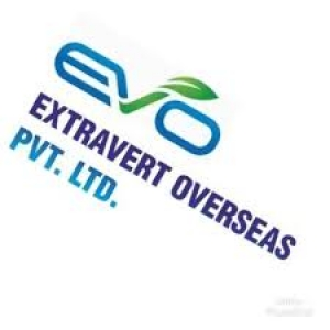 EXTRAVERT OVERSEAS