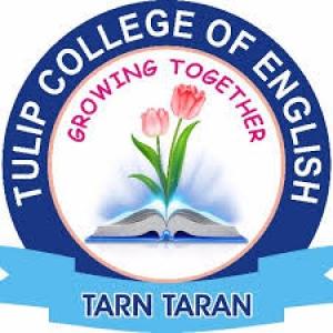 Tulip College Of English