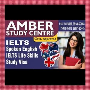 Amber Study Centre