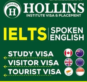 Hollins Institute Visa & Placement