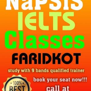 NaPSiS Classes