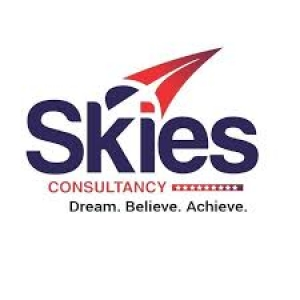Skies Consultancy