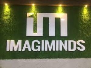 IMAGIMINDS
